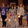 Sporting Group - Pictured from left to right: 1st Place OTCH Lakebound's Dancing Poet VCD1 UDX RE JH - Labrador Retriever - Renate Van Allen; 2nd Place OTCH Westwind Nite-Sky Of Montana UDX7 - Labrador Retriever - Beth Chapman; 3rd Place OTCH Dd's Dreams Do Come True UDX4 RE TDX JH - Golden Retriever - DeeDee and Billy Anderson; 4th Place OTCH Coppertop Celebration UDX4 TDX JH - Golden Retriever - Terry L. and Steven A. Southard