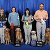 Sporting Group - Pictured from left to right: 1st Place OTCH Wakemup' s Dancing Honey Bee UDX7 RN - Golden Retriever - Brenda Enders; 2nd Place NOC OTCH DD' s Dreams Do Come True VCD1 UDX6 RE TDX JH - Golden Retriever - Dee Dee and Billy Anderson; 3rd Place OTCH Westwind Nite-Sky of Montana UDX10 - Labrador Retriever - Beth Chapman; 4th OTCH Shoreland' s Rev' er Up UDX7 - Golden Retriever - James Comunale