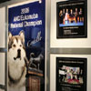 Eukanuba display for past champions