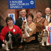 AKC Meet the Breeds - Best Booth in Show - Cavalier King Charles Spaniels