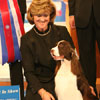 Best in Show - English Springer Spaniel - Ch Felicitys Diamond Jim - Handler: Kellie Fitzgerald