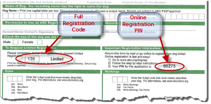 American Kennel Club - Online Dog Registration